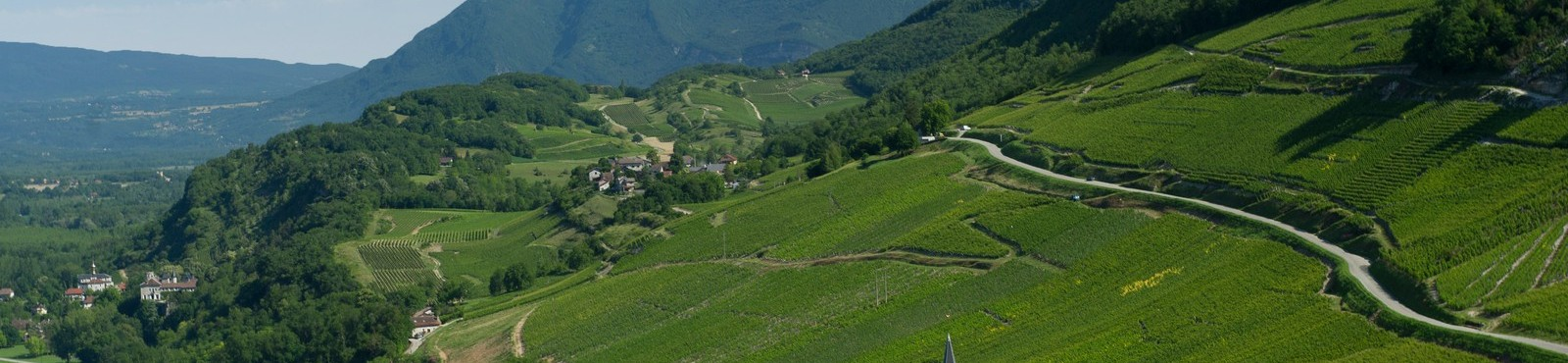 Mont Blanc wine tour