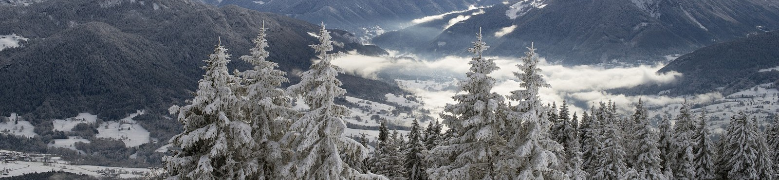 Explore snow of the Alps